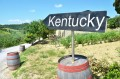 Kentucky year long sunlight makes the state a potential savings king in the solar energy world